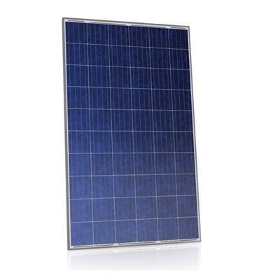 Painel Solar 265W Policristalino Seraphim Solar - SRP-6PB
