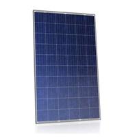 Produto Painel Solar 275W Risen Solar - RSM60-6-275P