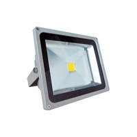 Refletor LED 50W Bivolt Golden - REFGD50W